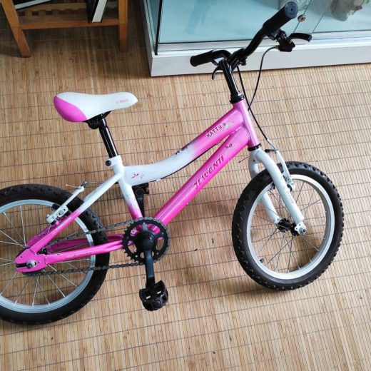"Bicicleta rosa JL Wenti Katty 16"""